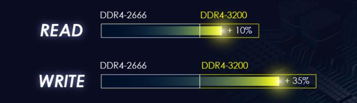 dd20.png
